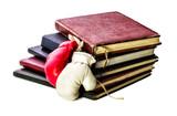 teoria-e-pratica!-livros-e-luvas-de-boxe