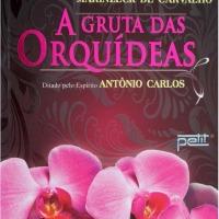 Resenha: A Gruta das Orquídeas, Vera Lúcia Marinzeck de Carvalho